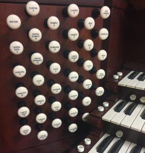 Organ 1 (2)